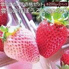 【ふるさと納税】雲仙いちごの赤桃セット