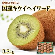 【ふるさと納税】国産キウイフルーツキウイヘイワード3.5kg