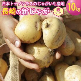 【ふるさと納税】飛子の馬鈴薯 じゃがいも 10kg(春じゃが)