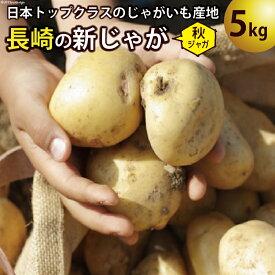 【ふるさと納税】飛子の馬鈴薯 じゃがいも 5kg(秋じゃが)