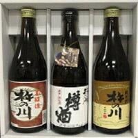15【ふるさと納税】県産酒「杵の川 燗酒飲み比べ720ml×3本セット」