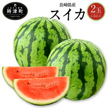 【ふるさと納税】長崎県産すいか2玉L玉以上スイカ西瓜フルーツ果物果実