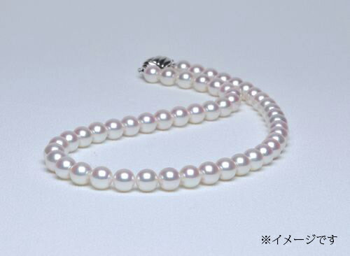 【ふるさと納税】No3 アコヤ本真珠パールネックレス