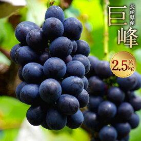 【ふるさと納税】巨峰 約2.5kg 葡萄 ブドウ ぶどう フルーツ 果物 果実 ギフト 長崎県産 送料無料