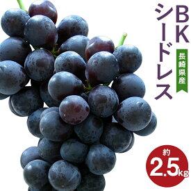 【ふるさと納税】BKシードレス 約2.5kg 葡萄 ブドウ ぶどう フルーツ 果物 果実 ギフト 長崎県産 送料無料【2021年8月下旬より順次発送予定】