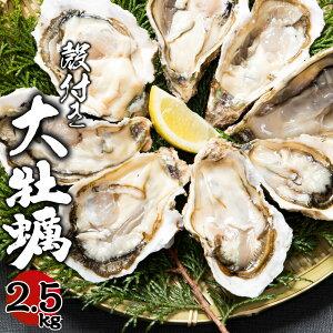 【ふるさと納税】大村湾産 大牡蠣 殻付き 約2.5kg Aセット (加熱用) 冷蔵 長崎 カキ かき 送料無料