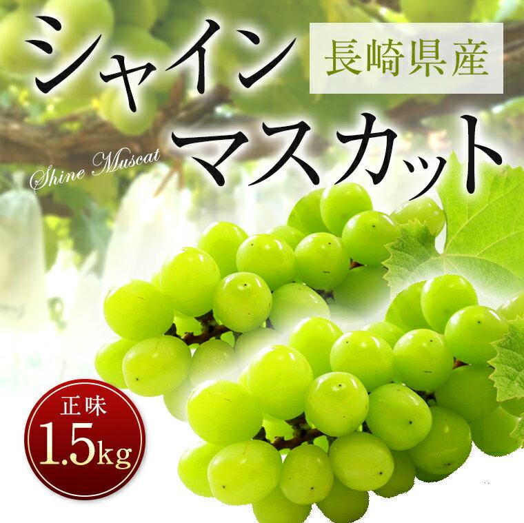 【ふるさと納税】長崎県産 シャインマスカット 正味1.5kg 葡萄 フルーツ 果物 果実