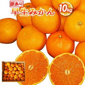 【ふるさと納税】訳あり 早生みかん 約10kg 蜜柑 ミカン フルーツ 柑橘 果物 数量限定 時津町産 九州産 送料無料