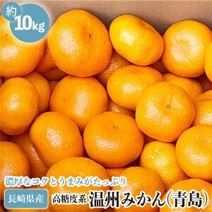 【ふるさと納税】高糖度系 温州みかん (青島) 10kg【長崎ぶんたんの会】 [OAF006]