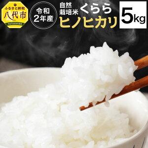 【ふるさと納税】令和2年度米 自然栽培米 くらら ヒノヒカリ ひのひかり 精米 5kg お米 白米 国産 九州産 送料無料