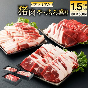 【ふるさと納税】プレミアム 猪肉 やっちろ盛り セット 3種 各500g 合計1.5kg ロース バラ モモ ジビエ イノシシ お肉 冷凍 精肉 食品 八代市産 熊本県 九州 送料無料