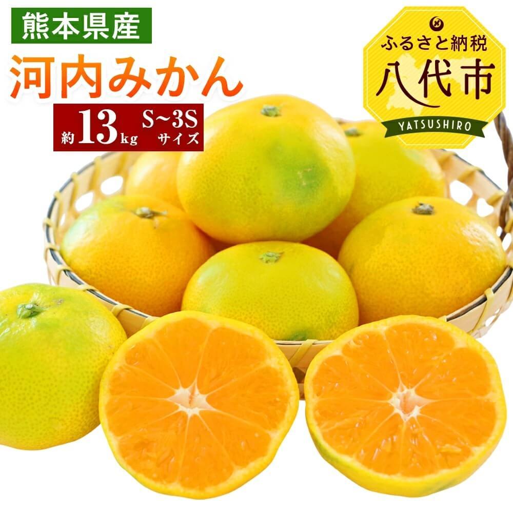 【ふるさと納税】熊本県産 河内みかん 13kg S〜3Sサイズ 送料無料 ミカン フルーツ ギフト 贈り物 蜜柑 国産