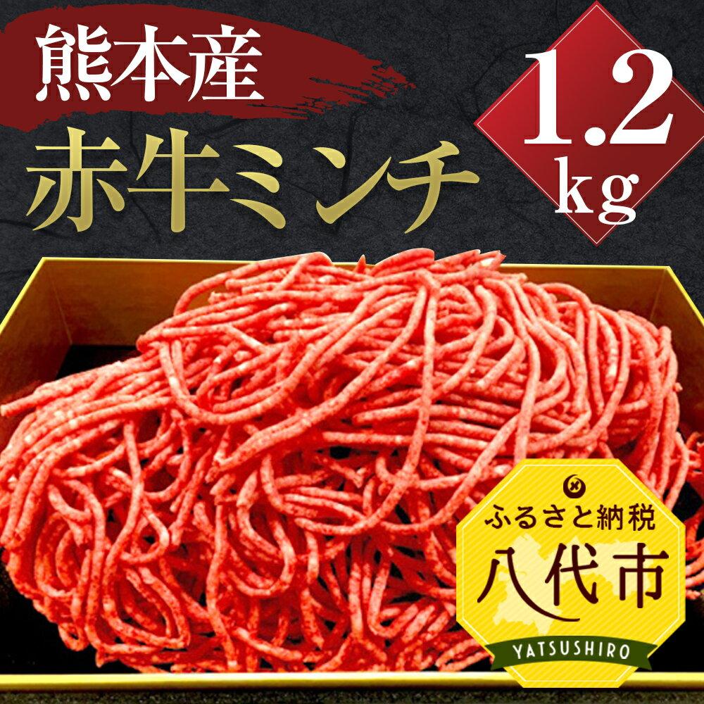 【ふるさと納税】贅沢! 熊本県産 赤牛 100% ミンチ 1.2kg (600g×2パック) あか牛 冷凍 小分け 牛肉 赤牛 国産 ギフト 贈りもの 送料無料