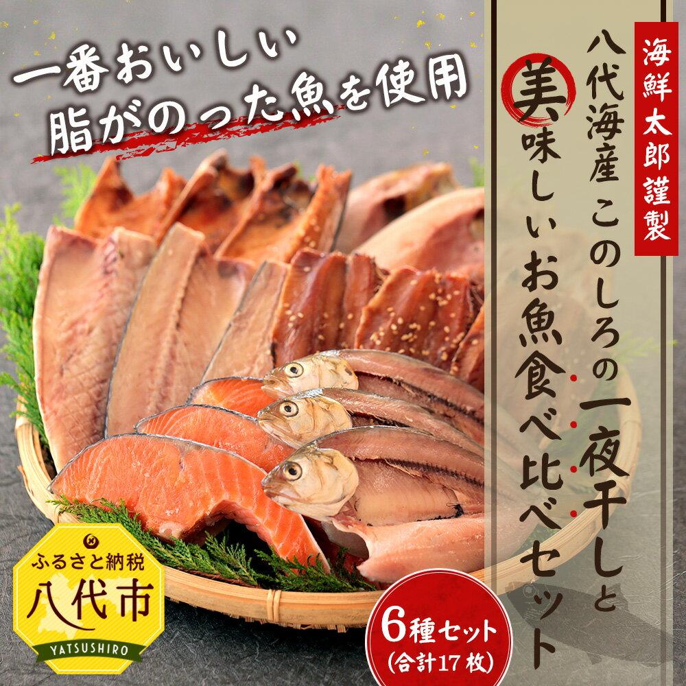 【ふるさと納税】八代海産 このしろの一夜干しと美味しいお魚食べ比べセット 干物セット ひもの トロ鯖 真ほっけ 真鰯 醤油干し サーモン切り身 さば いわし 鮭