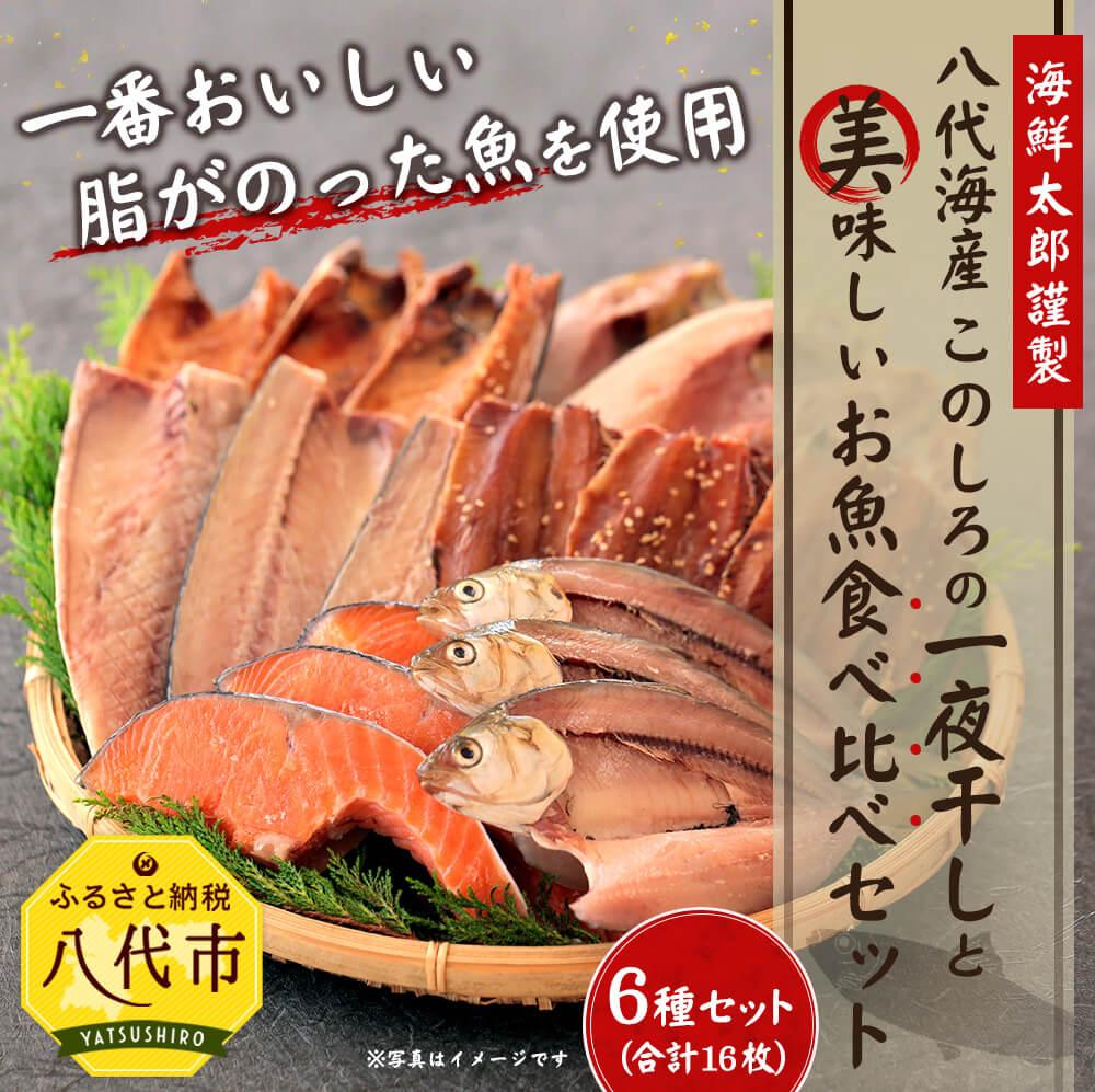 【ふるさと納税】八代海産 メガ盛り 6種16枚入り! このしろの一夜干しと美味しいお魚食べ比べセット 干物セット ひもの トロ鯖 真ほっけ 真アジ 醤油干し サーモン切り身 さば 鮭 鯵