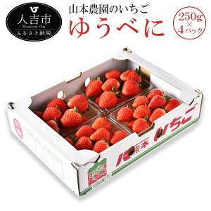 【ふるさと納税】山本農園のいちご ゆうべに 250g×4パック 苺 イチゴ 国産 九州産 熊本県産 果物 フルーツ 送料無料