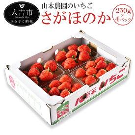 【ふるさと納税】山本農園のいちご さがほのか 250g×4パック 苺 イチゴ 国産 九州産 熊本県産 果物 フルーツ 送料無料
