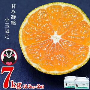 【ふるさと納税】 ご家庭用 訳あり 熊本県産ひとくちもぎたてみかん 約7kg(3.5kg×2箱) 2S-3Sサイズ 先行予約 熊本県産 ちょっと訳あり 期間限定 フルーツ 秋 旬 柑橘 小玉 みかん 荒尾市《11月中