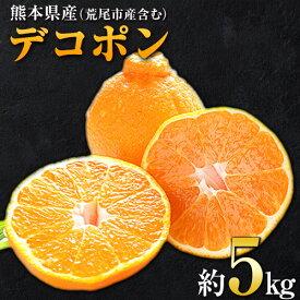 【ふるさと納税】生産量日本一熊本県産(荒尾市産含む)デコポン約5kg前後(約12-24玉前後)贈答用 ギフト 柑橘 個別光センサー選果 《2月末-4月上旬頃より順次出荷》