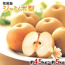 【ふるさと納税】【先行予約】荒尾梨ジャンボ梨 フレッシュフーズ 約4.5kg〜5kg (5-6玉) なし フルーツ 果物 新鮮 《9月中旬-11月上旬頃より順次出荷》