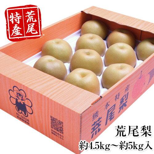 【ふるさと納税】熊本県荒尾市産 荒尾梨 約4.5kg〜約5kg 数量限定 なし フルーツ 果物 新鮮 クール便《7月末-8月末頃より順次出荷》