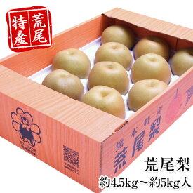【ふるさと納税】熊本県荒尾市産 荒尾梨 約4.5kg〜約5kg 数量限定 なし フルーツ 果物 新鮮 クール便《8月末-9月末頃より順次出荷》