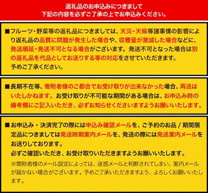 【数量限定】熊本県荒尾市産荒尾梨約4.5kg〜約5kg【ふるさと納税】《7月末-8月末頃より順次出荷(土日祝除く)