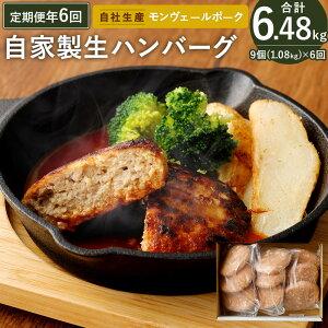 【ふるさと納税】定期便 年6回 隔月お届け 熊本県産 モンヴェール ポーク 自家製 生ハンバーグ 合計9個 120g×3個入り3パック 豚肉 国産 九州産 冷凍 送料無料