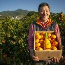 【ふるさと納税】農家レストラン果夢樹がお届け 旬の柑橘とジュースの詰合せ