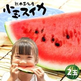 【ふるさと納税】熊本玉名スイカ 小玉(2玉)