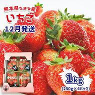 【ふるさと納税】いちご1kg(250g×4パック)熊本県