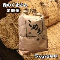 【ふるさと納税】熊本県玉名産お米「森のくまさん」(5kg)