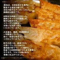 【ふるさと納税】『玉名餃子』どどど〜っんと120個(30個×4袋)