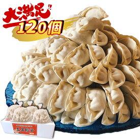 【ふるさと納税】『玉名餃子』どどど〜っんと 120個(30個×4袋)旨み溢れる肉汁