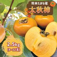 【ふるさと納税】熊本たまな産「太秋柿」8〜12玉