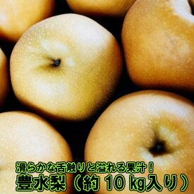 RA-131【ふるさと納税】山鹿産 豊水梨 たっぷり約10kg入り
