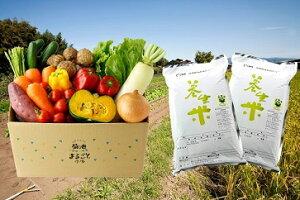 【ふるさと納税】E-36 養生米と旬の野菜セットE