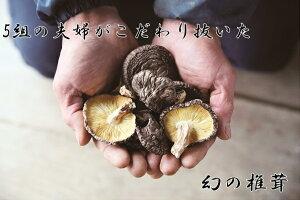 【ふるさと納税】A-39 きくち観光物産館 幻の椎茸黒香セット