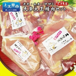 【ふるさと納税】天草大王精肉セット 1.5kg 地鶏 鶏肉 セット 熊本県 上天草産 モモ ムネ ササミ