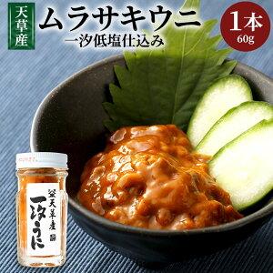 【ふるさと納税】天草産ムラサキウニ(一汐低塩仕込み)60g 塩 甘塩うに うに むらさきうに ウニ うに 熊本県産 九州 冷凍 送料無料