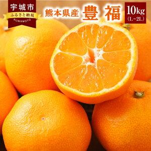 【ふるさと納税】 熊本県産 豊福 10kg(L〜2L) ご家庭用 極早生みかん 大きめのお徳用サイズ みかん ミカン 蜜柑 フルーツ 果物 九州 送料無料