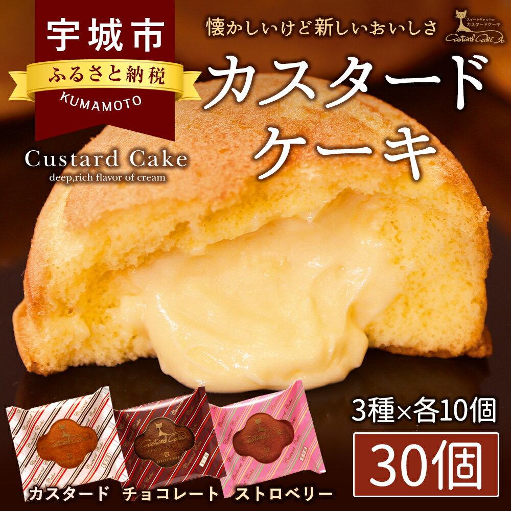【ふるさと納税】カスタードケーキ 30個 カスタード チョコレート ストロベリー スイーツ お菓子 熊本菓房 送料無料