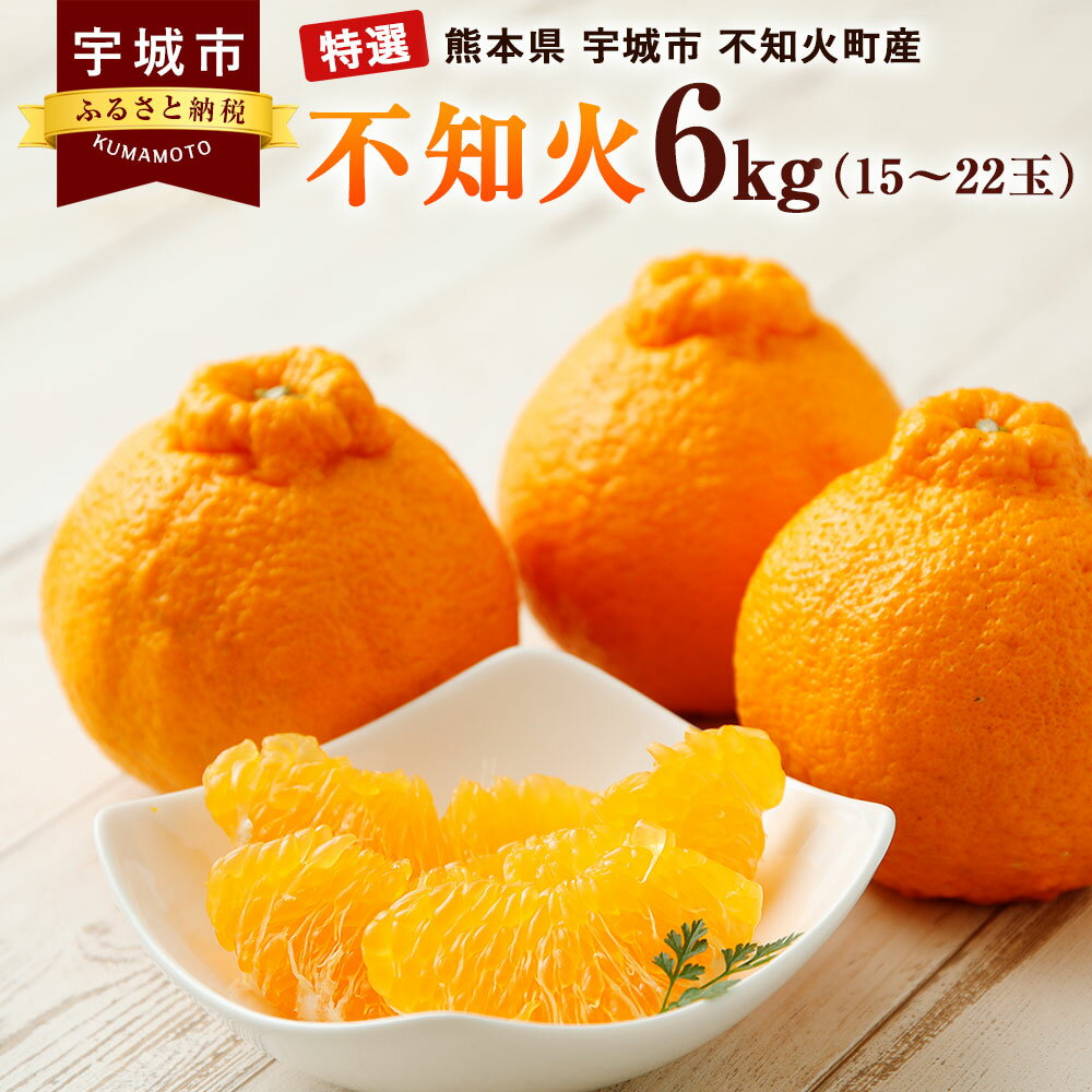 【ふるさと納税】特選 不知火 6kg 15〜22玉 熊本県産 ギフト 贈答用 フルーツ みかん 柑橘 デコポンと同品種