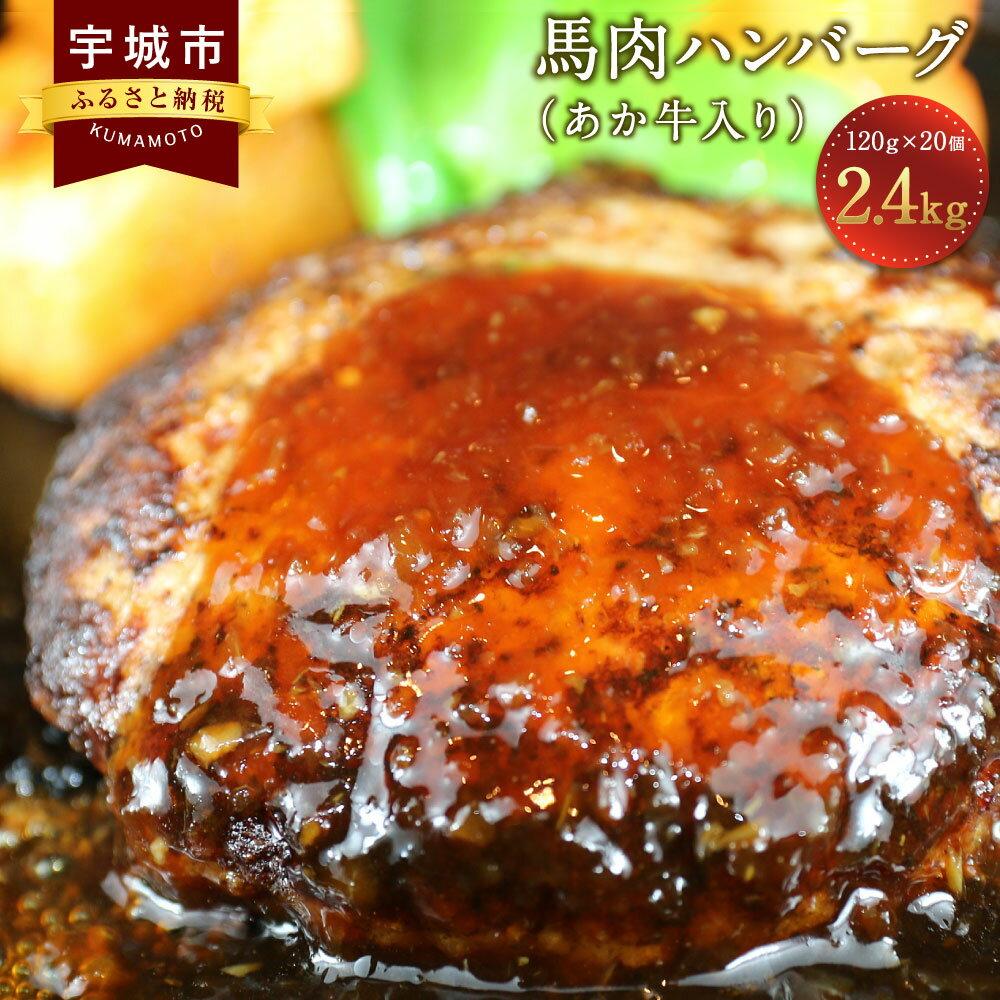 【ふるさと納税】馬肉ハンバーグ (あか牛入り) 120g×20個 合計2.4kg ヘルシー 牛肉 挽肉 冷凍 送料無料