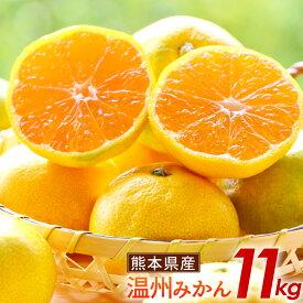 【ふるさと納税】熊本県産 温州みかん 11kg 宇城市 三角産 ミカン 柑橘 フルーツ 果物 大容量 送料無料