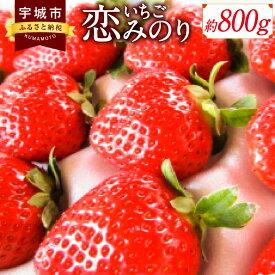【ふるさと納税】いちご 恋みのり 約800g 400g×2パック イチゴ 苺 国産 九州産 熊本 熊本県産 果物 くだもの フルーツ送料無料