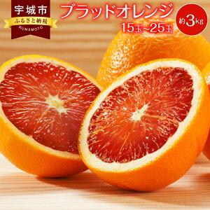 【ふるさと納税】ブラッドオレンジ お徳用 約3kg 15玉〜25玉 みかん 蜜柑 柑橘 フルーツ 果物 熊本県産 九州産 送料無料