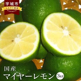 【ふるさと納税】 国産 マイヤーレモン 3kg 九州産 熊本県産 グリーンマイヤーレモン レモン フルーツ 果物 ビタミン 柑橘 送料無料