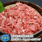 【ふるさと納税】熊本県天草産黒毛和牛切り落とし1kg(500g×2)