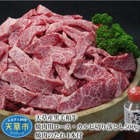 【ふるさと納税】天草産黒毛和牛 焼肉用ロース・カルビ切り落とし 500g 焼肉のたれ 1本付